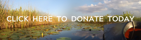 everglades.org_donate.png